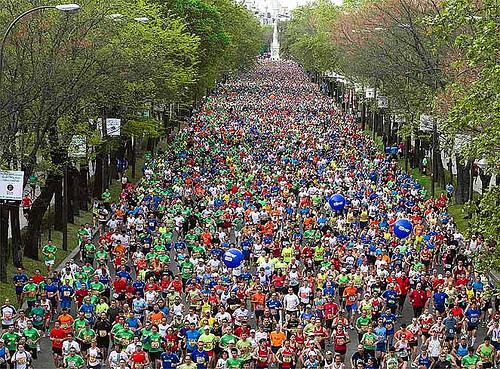 Maraton de Madrid 2013