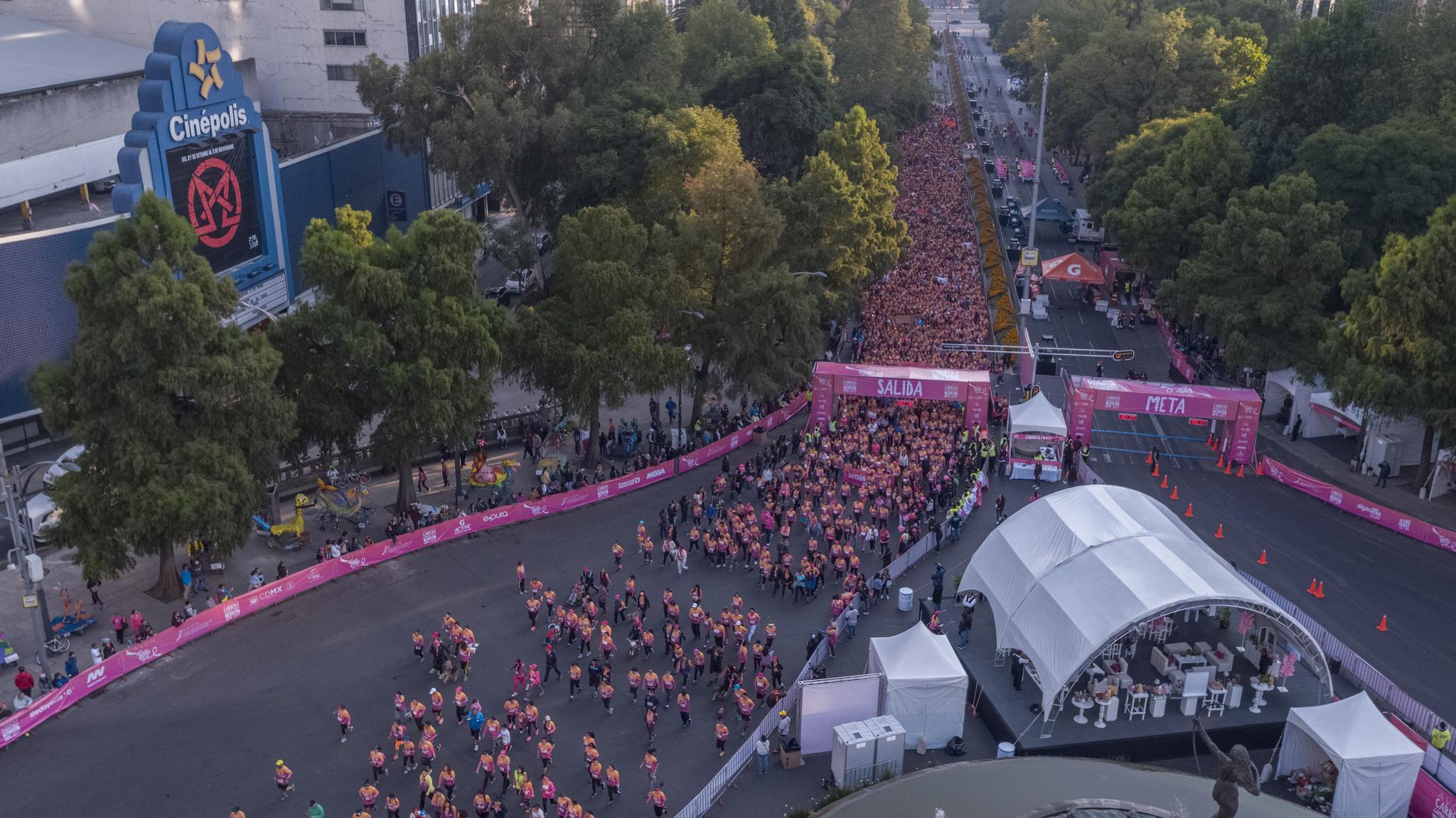 mejor carrera en la ciudad de mexico encuesta cdmx carreras
