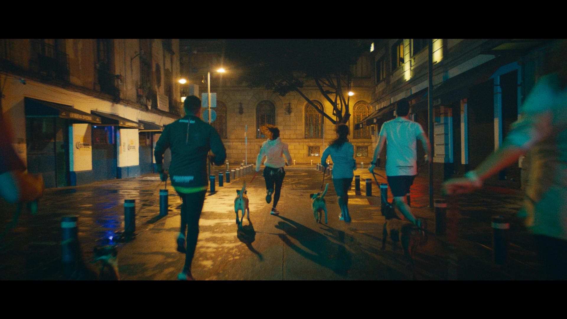 adidas runners entrenamiento con perros